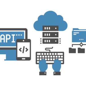 IT-Dienstleistungen und Individualentwicklung